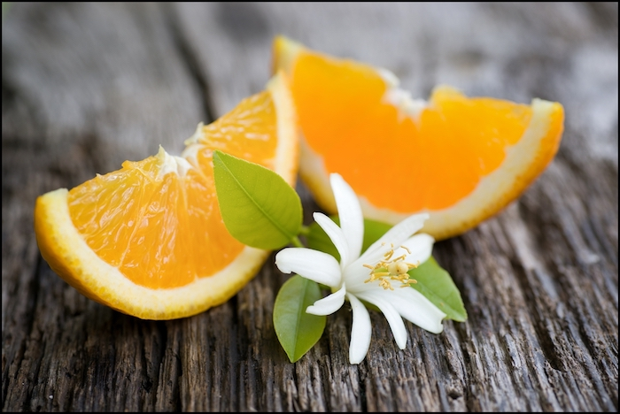 posso dare l'arancia ai cani