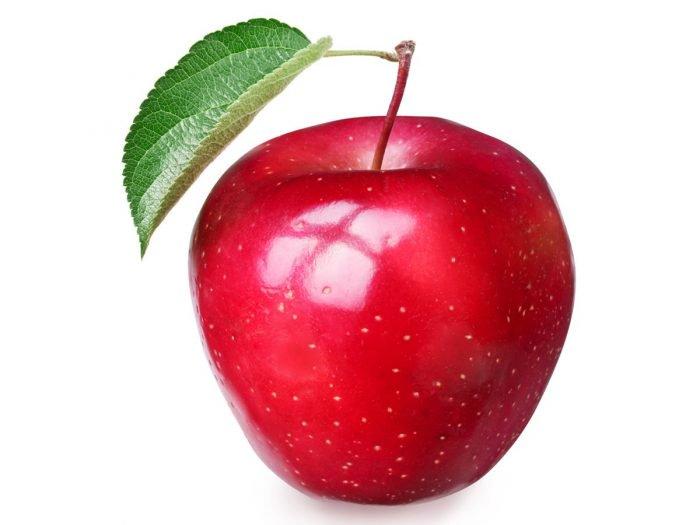 dare frutta ai cani mela al cane