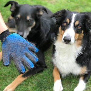 Guanto spazzola per cani