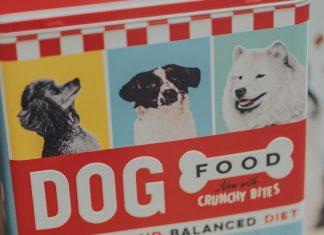 Crocchette per cani economice