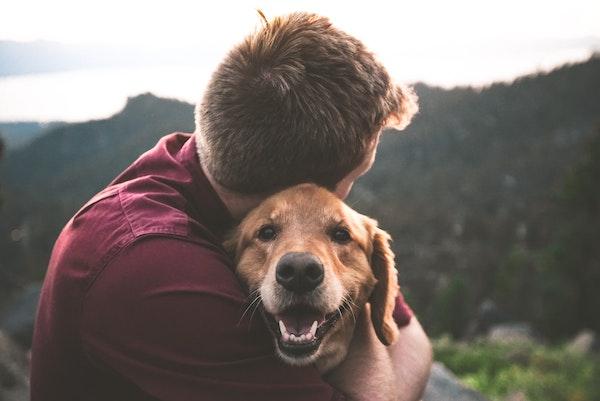 Perché un GPS per cani è utile