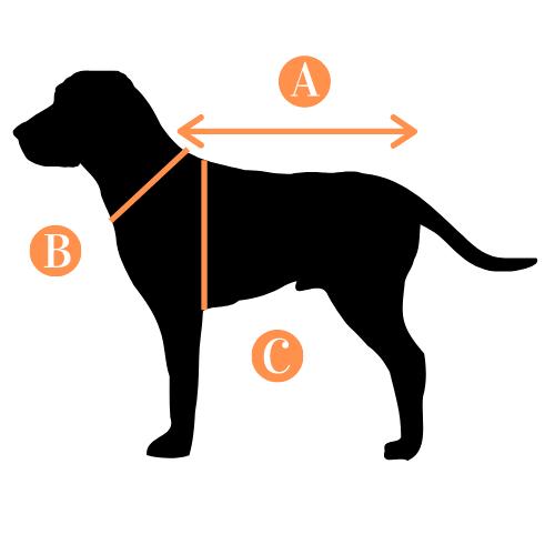 Abbigliamento per cani: come misurare la taglia